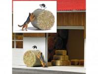 Busch 7920 pes honí kočku
