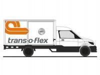Rietze 33043 Streetscooter Work L trans-o-flex Express
