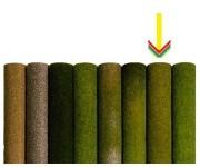 Noch 00280 koberec letní louka 120x60cm