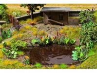 vodní a břehové rostliny