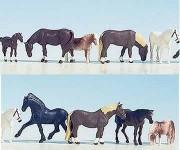 Noch 45761 koně 9ks TT