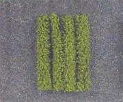 Jordan 12 živý plot zelený H0 dl.10cm 4ks H0/TT