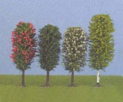 Jordan 5a různé stromy H0 10-12cm H0/TT