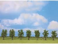 Noch 25088 listnaté stromy 80mm 7ks