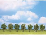 Noch 25090 ovocné stromy 7ks 8 cm