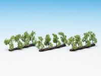 Noch 21530 sadové stromy
