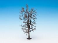 Noch 22020 lípa - kostra stromu