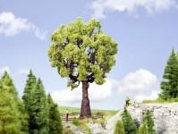 Noch 21761 dub, výška 19 cm