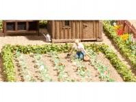 Noch 14109 sada ovocná zahrada