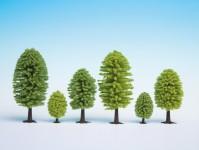 Noch 32801 listnaté stromy 25 ks
