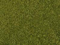 Noch 07300 foliáž středně zelené listy