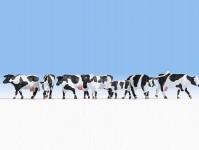Noch 15725 krávy černobílé