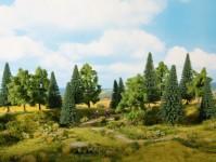 Noch 24623 smíšený les
