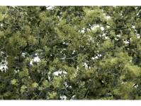 Woodland Scenics F1133 jemná listová foliáž olivově zelená