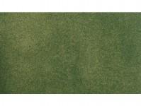 koberec malý zelený