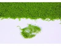Heki 15101 realistické rostliny středně zelené