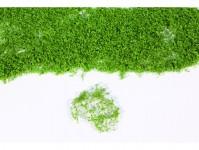 Heki 15102 realistické rostliny svěží zelené
